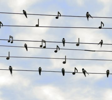 The Power of Music: 7 Benefits of Listening to Songs